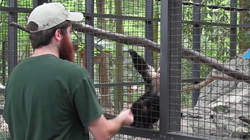 Zoo Tech Program