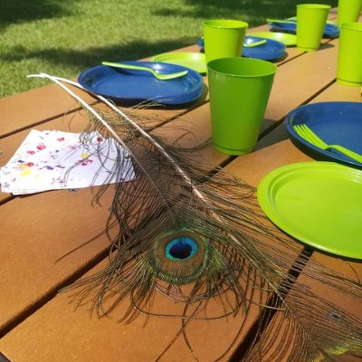 reusable plastic plates, cups, cutlery, peacock feather and bookmarks