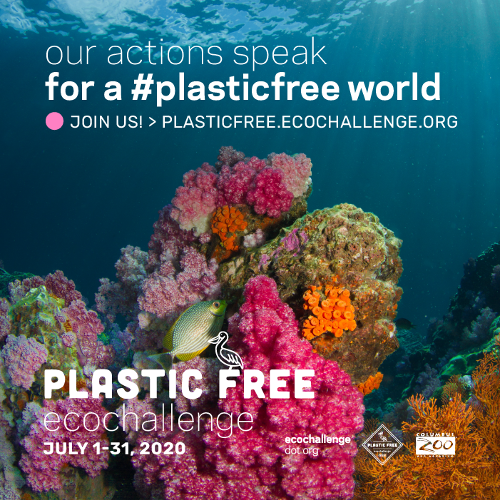 coral reef with fish Plastic Free EcoChallenge promo. July 1-31, 2020